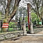 London Tree Week: The Fluffy Forest Four